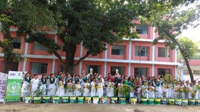 বটমলি হোম স্কুল প্রাঙ্গণ সবুজ করলো গ্রীণ সেভার্স-সেইলর