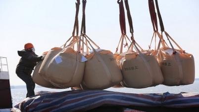 করোনা ভাইরাস: আন্তর্জাতিক পণ্য পরিবহনে বিপর্যয়