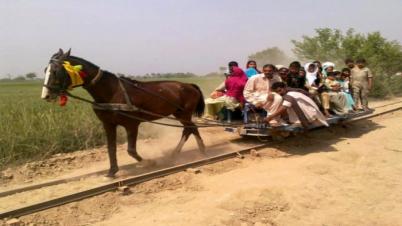 পাকিস্তানের ঘোড়ায় টানা ট্রেন (ভিডিও)