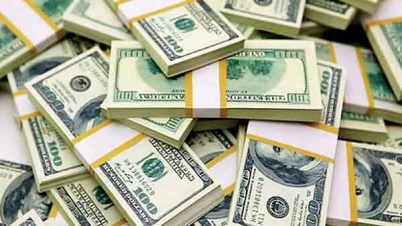 রিজার্ভ ছাড়ালো ৪৩ বিলিয়ন ডলার