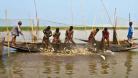 ৪৭ হাজার জেলে পাচ্ছে সরকারি চাল
