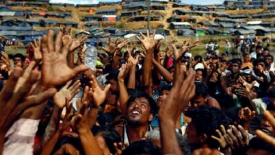রোহিঙ্গাদের ৬০০ মিলিয়ন ডলার সহায়তার অঙ্গীকার